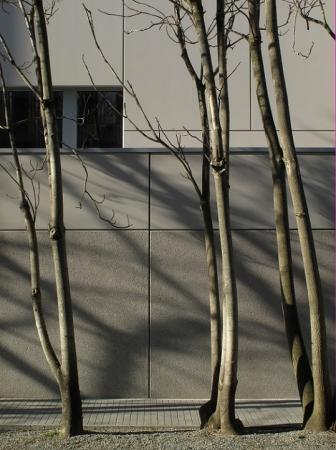 http://www.faces-architectes.net/files/gimgs/th-63_façade est détail_v2.jpg
